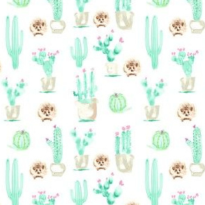 17-15P 4x4 Hedgehog Watercolor || Green Pink Jade Mint Brown White Succulent Cactus Harry Forest Animal_Miss Chiff Designs