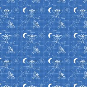 Blueprint Moon Moths, Luna Moth lg print