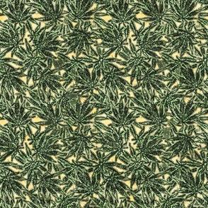 Marijuana Green Line