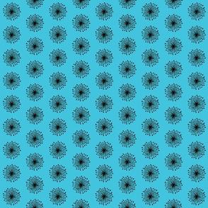 Seeds - blue