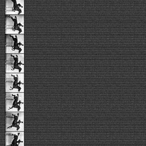 Daisy Jumping ~ Border Print