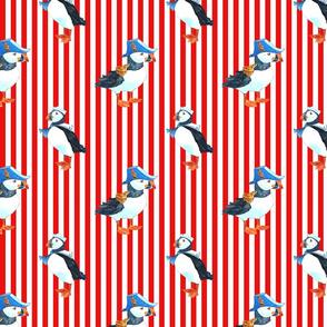 red puffin stripe