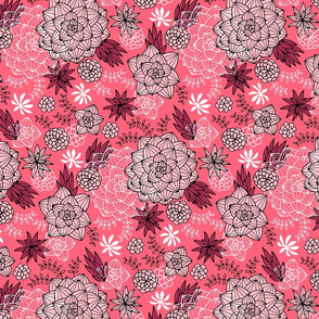 Graphic succulents pink