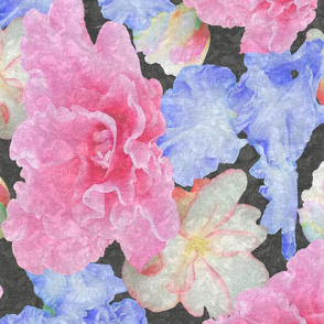 Pink and Blue Flower Play Black Lace