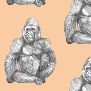 Gorillas on Peach