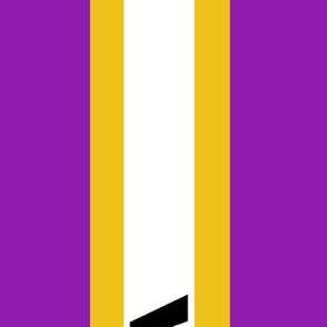 Suffragette Sash - American - Purple and Gold - needs 2 yards to get a complete sash