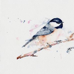 Little_Bird