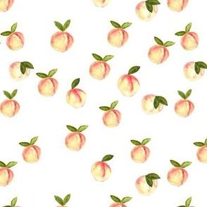 watercolor peaches || white