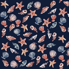 Shells of the Ocean