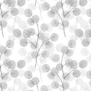 Branches with round leaves 11