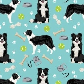 border collie toys tennis balls light blue fabric