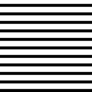 Black and White Stripe 1/2 in white 1/8 in black
