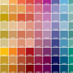 Paint chips and Hex codes