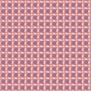 Pink Tiger Flowers