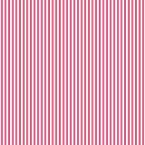 pinstripes vertical hot pink