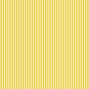 pinstripes vertical mustard yellow