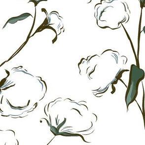 Cotton Bolls Sketch