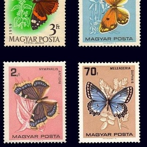 extra-large butterfly postage stamps from Hungary,  on black