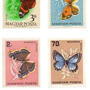 extra-large butterfly postage stamps from Hungary, on white