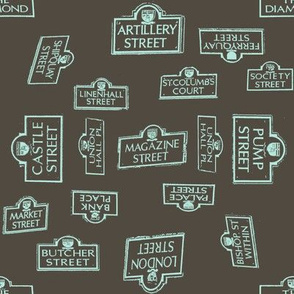 Derry City Streets Grey- Large