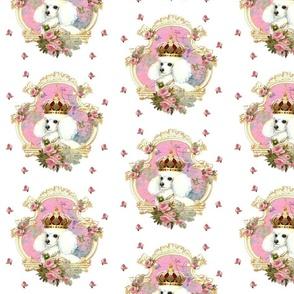 White Poodle n Pink Roses