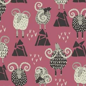 Mountain Sheep on Pink