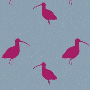 birds_beakspinkgreen