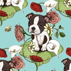 Boston Terrier Puppy Posie with flowers and bees on light teal