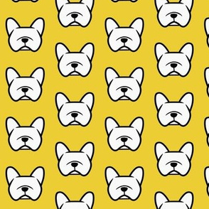 French Bulldogs  on a bright sunny yellow