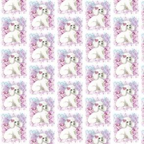 White Poodle n Lilacs Portrait