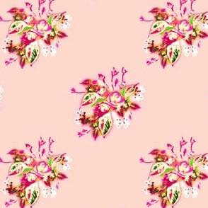 China Rose in pink