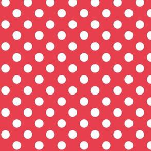 polka dots 2 bold coral