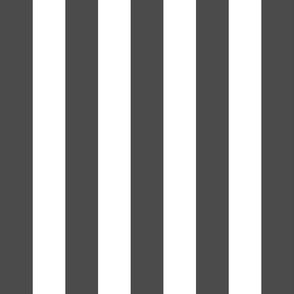 stripes lg dark grey vertical
