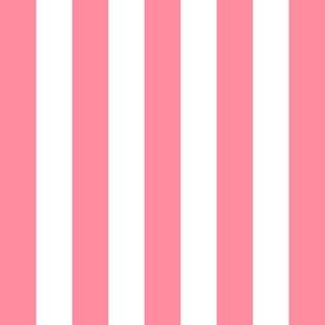 stripes lg pretty pink vertical