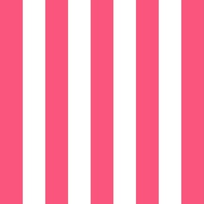 stripes lg hot pink vertical