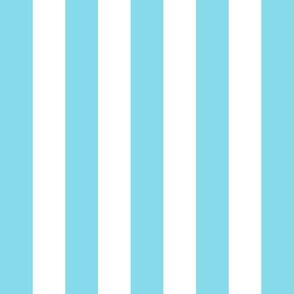 stripes lg sky blue vertical
