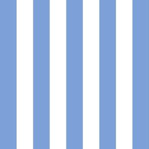 stripes lg cornflower blue vertical