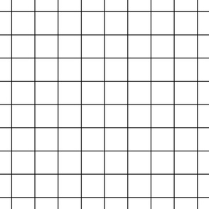 "black and white windowpane grid 2"" square check graph paper"