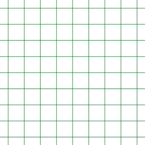 "kelly green windowpane grid 2"" square check graph paper"