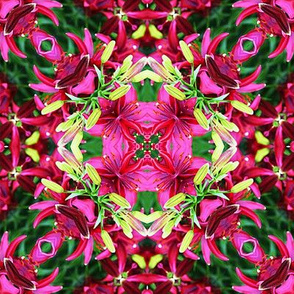 Pink and Burgundy Lilies Abstract
