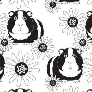 large guinea-pigs-and-daisies-black-and-white