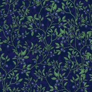 New Blueberries _Blue