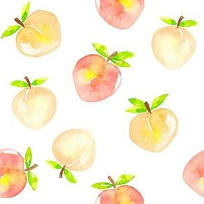 Peaches watercolour on white