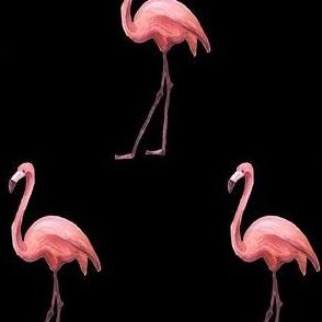 Flamingo Park - Black