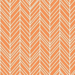 herringbone feathers tangerine