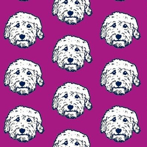 Goldendoodles - adorable doodle dogs in purple