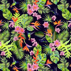 Rainforest Spirit
