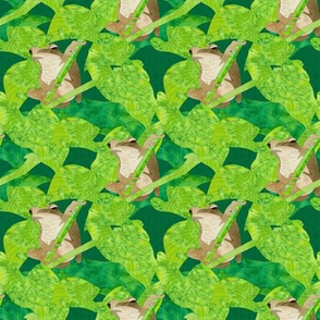 Tree frogs and jungle leaves #2