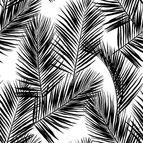 palm leaves - black on white, small. silhuettes tropical forest black white hot summer palm plant tree leaves fabric wallpaper giftwrap