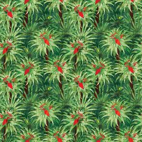 RainforestAnimals